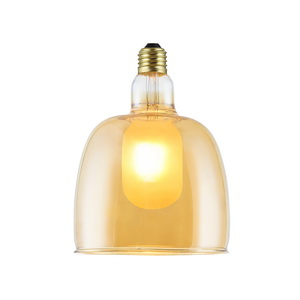 Special Design Vintage Led Bulb with Light Fixture